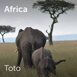 Toto - Africa | Sheet music for choirs and a capella